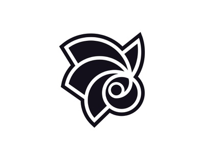 Galaxibira brand logo logotype graphicdesign design logofolio brand identity branding logo design