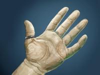 Hand 2 (60 minute study)