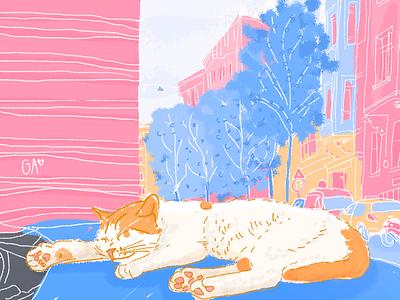 cats of istanbul istanbul sleep nap cat pastels photoshop wacom adobe digital illustration illustration