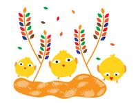 chicks and tricks