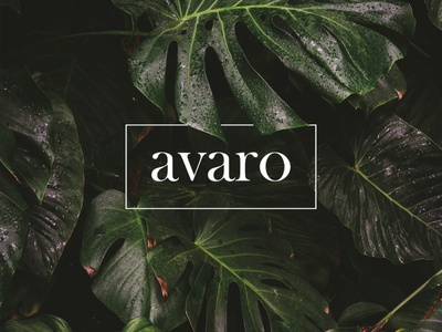 AVARO. Logo design