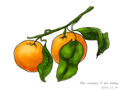 Orange- 12/19/2018 at 07:57 AM