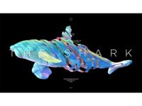 THE SHARK - 07/27/2018 at 07:19 AM