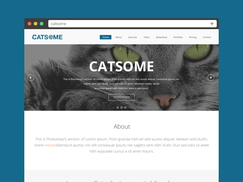 Catsome Final catsome about services team download portfolio pricing contact icon button clean social