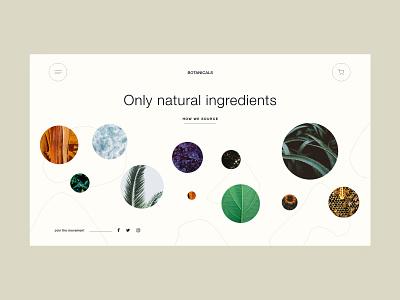 Skincare landing page concept earthtones beige light natural skincareherbal skincare botanical design flat minimal ui