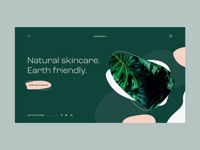 Natural Skincare landing page | Concept