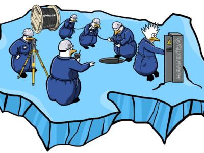 Pinguins at work