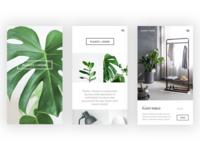 PLANTS + HOME