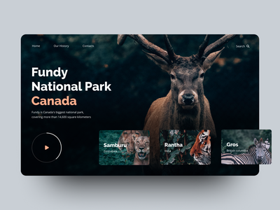 National parks animal animals digital 2019 top shots dark design ui dark ui