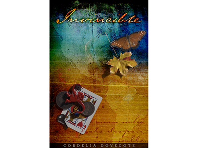 Invincible Book Cover texture paperback americas digital illustration cover illustration book cover