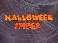 Halloween Spider  2