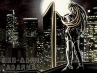 Project Re:Imagine - ADARNA