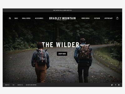 Bradley Mountain 🗻 Explorations photography typography hero landing page web