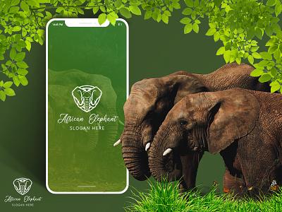 Elephant Academy Application vector ui illustration
