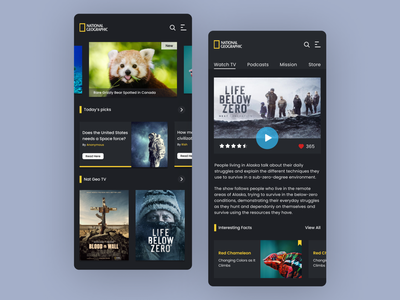 Nat Geo UI Design Concept | Rish Designs uidesign space movie app best designer best design bear android dark mode dark app adobe xd discovery nat geo nature app dark ui dailyui figma rish designs ux ui