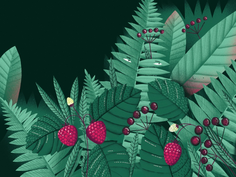 """""""Do you hear the trees talking?""""/illustration1 forest nature childrenbook illustration book trees"""