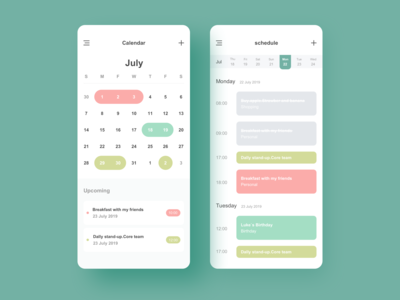 Calendar & Project management App Concept