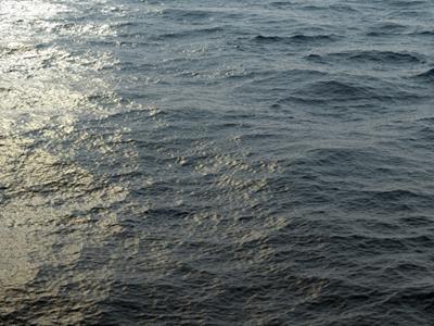 3D: Ocean 3d water waves ocean modo