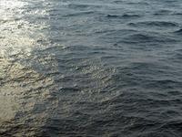 3D: Ocean