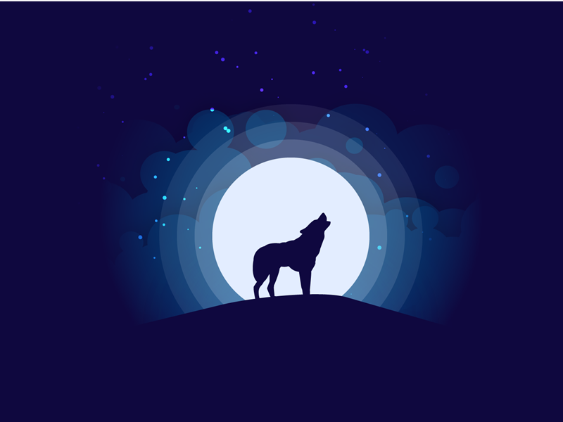 Moonlight Silhouette illustration wolf landscape moonlight night dark silhouette