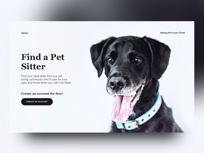 Find a Pet Sitter pets dogs ui