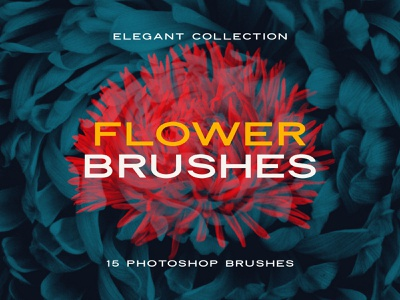 Elegant Flower: Free Photoshop Brushes clipart digital art exposure double stamp floral flower adobe photoshop brush abr psd design download freebie free blog thedesignest