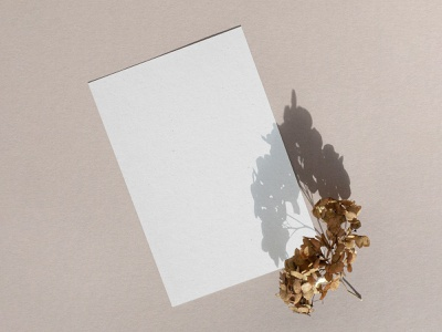 Lumea Free Stationery Mockup Set texture template stationery showcase shadow psd presentation photoshop paper mockup leaves freebie free floral download design card business blog art
