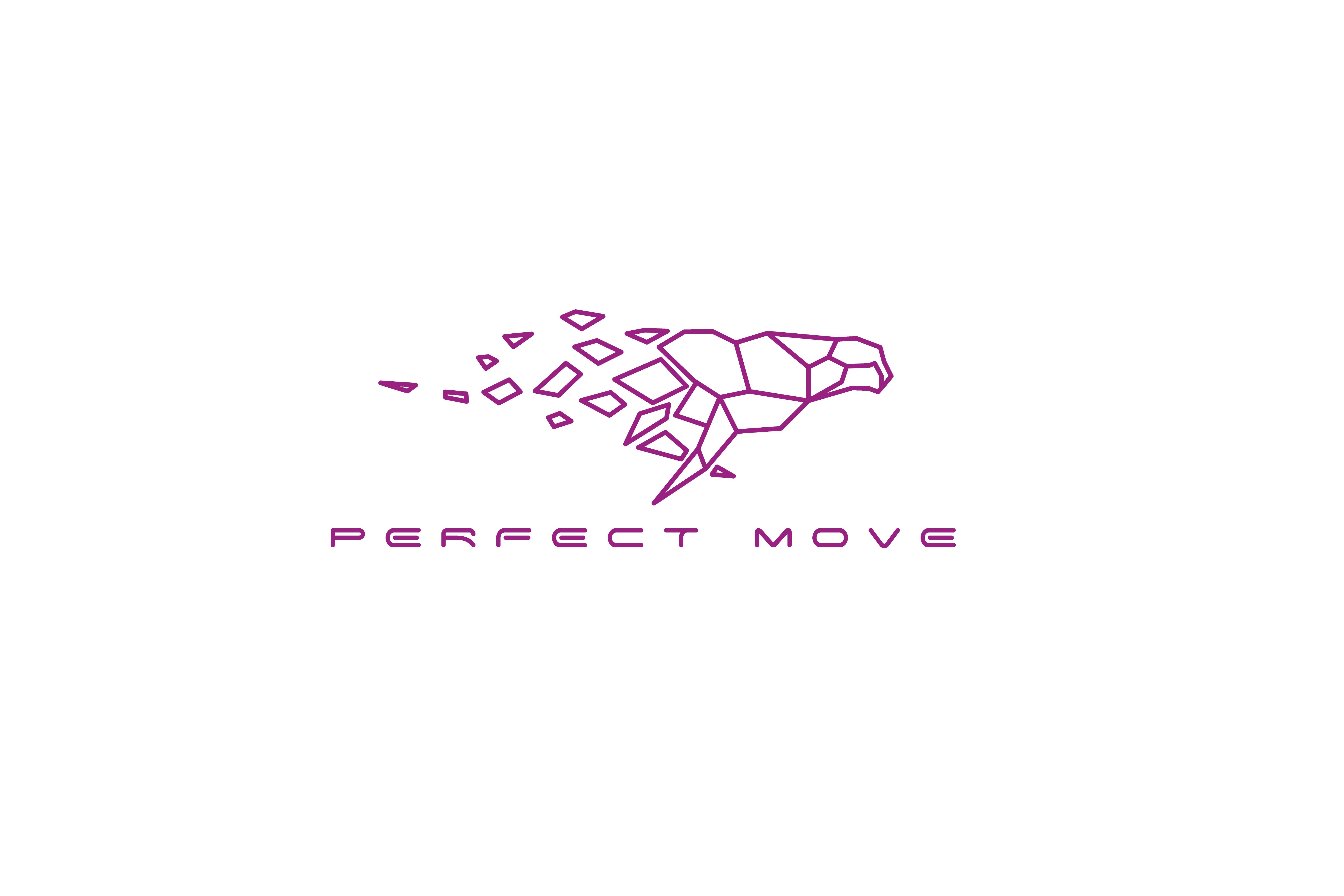 Perfect move logo 01