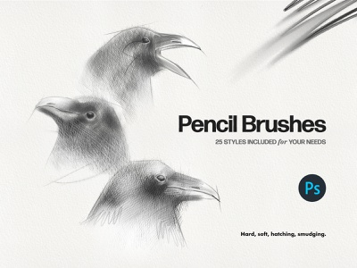 Basic Pencil Photoshop Brushes doodling picture smudge calligraphy crayon realistic art drawing charcoal illustration sketching hatching hard soft texture paper graphite brushes photoshop pencil