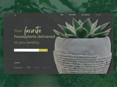 Plant Shop Above the fold –Daily UI 003