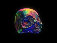 3D Holographic Skull