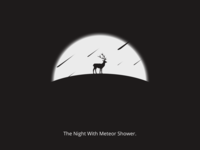 The Night With Meteor Shower