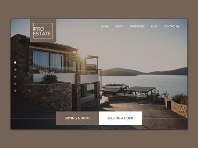 Eye-catching Real estate Web Design!