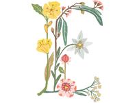 Botanical Letter E