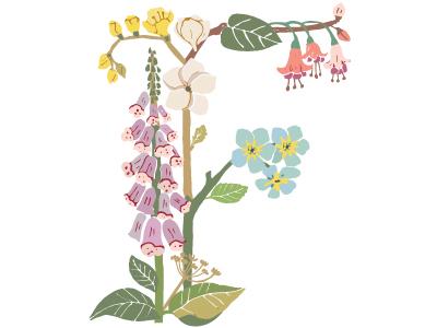 Botanical Letter F