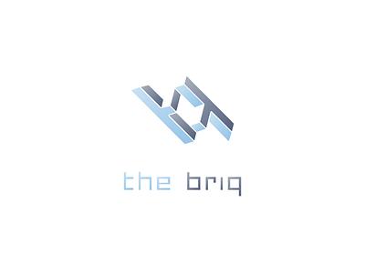 'the briq' logo symmetry mc escher coworking office space tech office logo