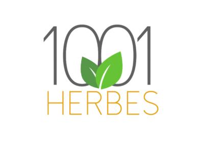 1001 Herbes - Logo concept