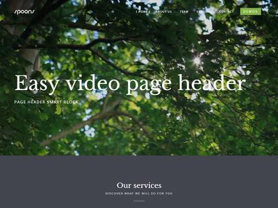 Spoons WordPress Video Header envato themeforest little neko web design business theme ux ui wordpress