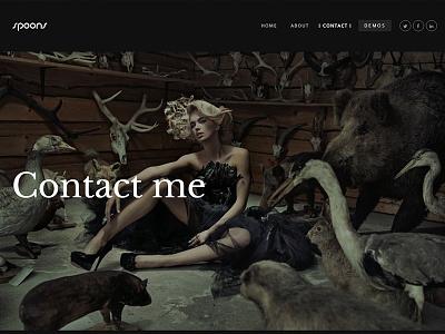 Portfolio Dark Contact page contact page business theme wordpress envato themeforest little neko ux ui web design