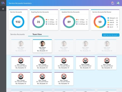 Service Accounts Inventory - Team View