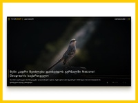 National geographic  1 dribbble shot 2x