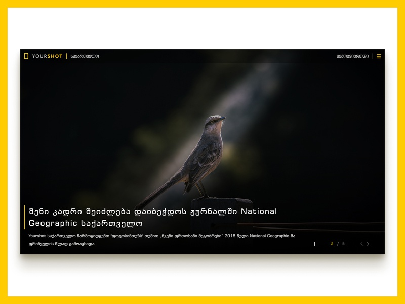 National Geographic - Yourshot Georgia national geographic web ux ui