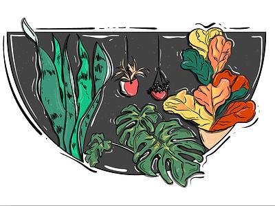 Indoor Plants plants vector art illustrator design vector graphics newbie illustration beginner graphicdesign