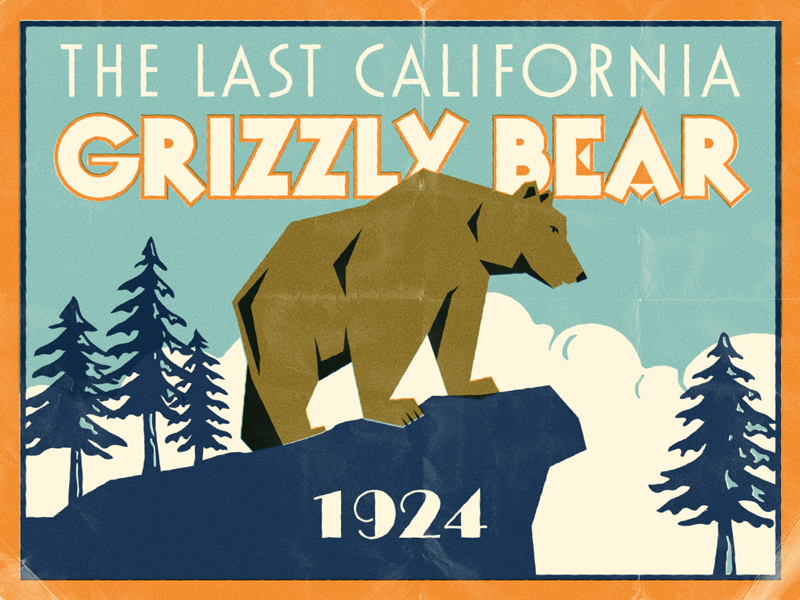 So Lonely illustration california bear