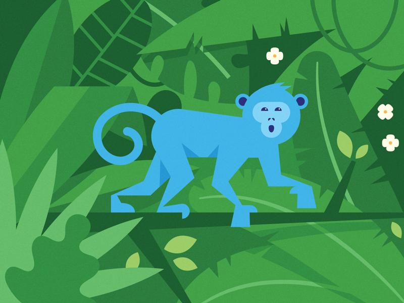 Monkey costa rica rain forest tropical monkey jungle illustration