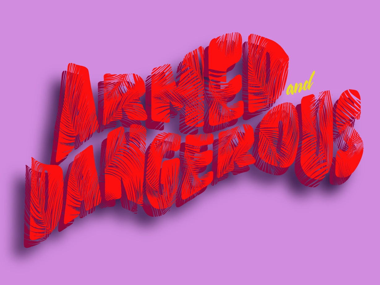 Armed And Dangerous by Stephanie Czapla | Dribbble | Dribbble