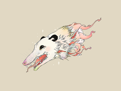 Opossum open animal opossum possum strange tshirt design drawing ipad artwork ipad art illustration apple pencil