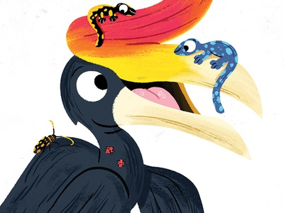 Hornbill kawaii colour toddler animal book character drawing animals kidslit fun kids illustrator cute illustration