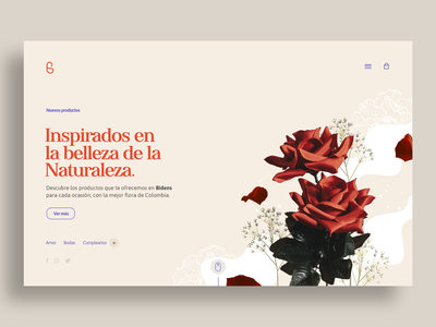 Bidens Website