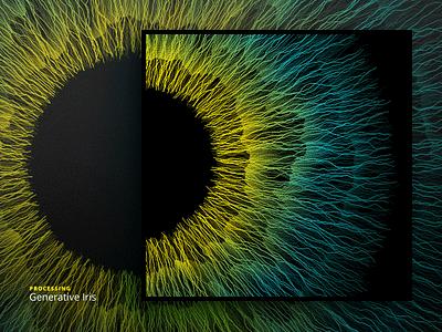 Generative Iris — Lamprotornis Regius palette texture processing iris generative eye computation colorfull code artificial